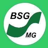 BSG MG